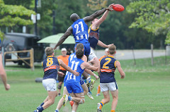 2015 AFL Ontario Grand Final Best of Ground and 4 x AFL Ontario Premiership Player
